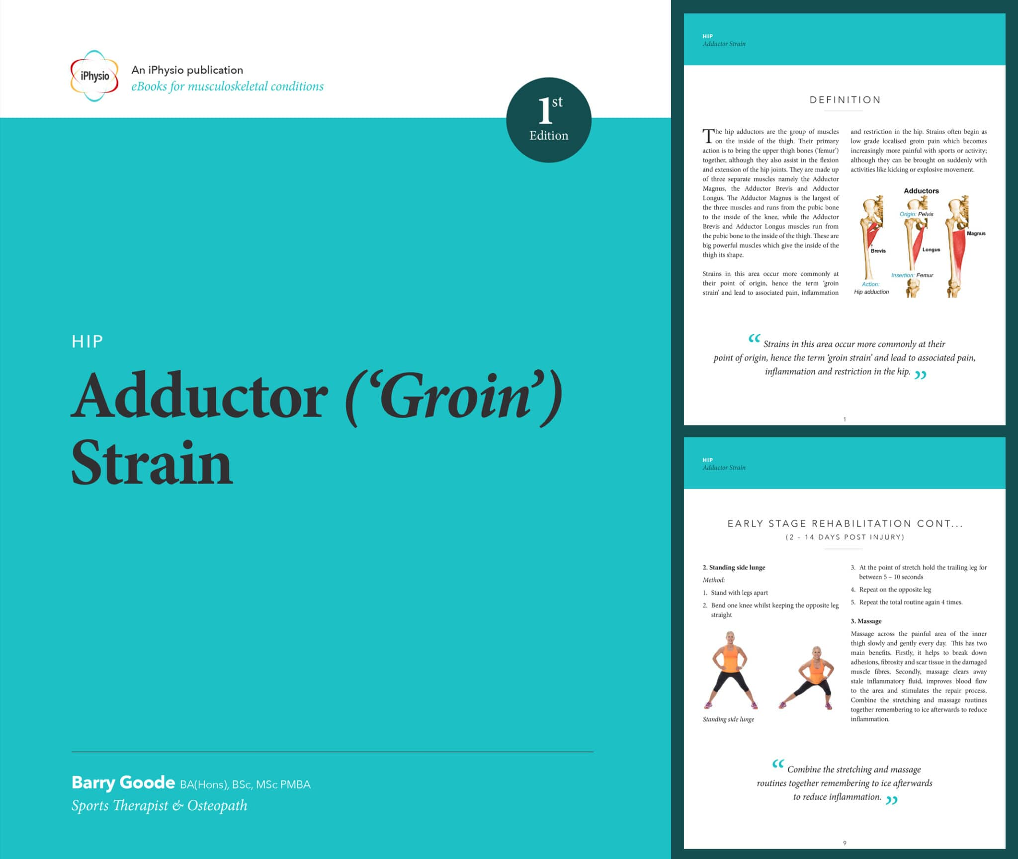 Adductor 'Groin' Strain treatment advice/> 				</div> <div style=